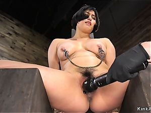 obese buxom chinese muff toyed in hog-tie